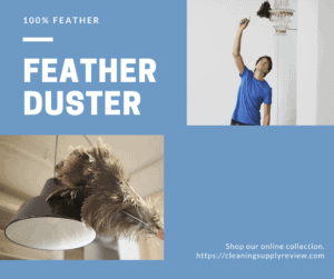 Feather Duster For You Need to Buy