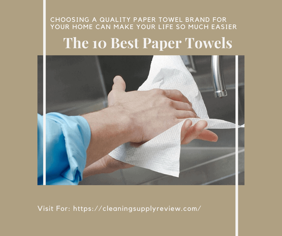 The 10 Best Paper Towels