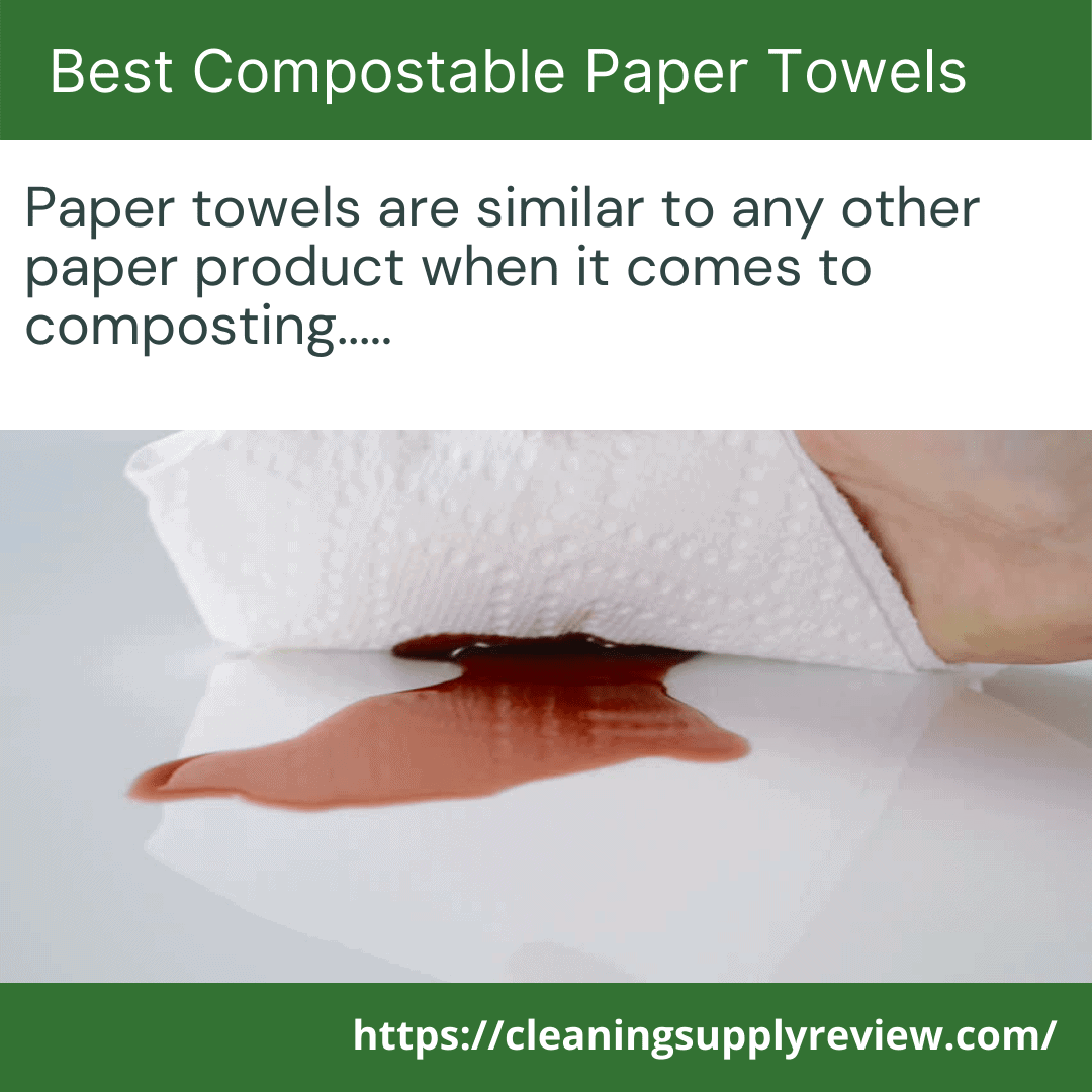 Best Compostable Paper Towels