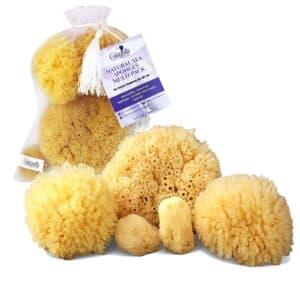 Real Natural Sea Sponges Multipack