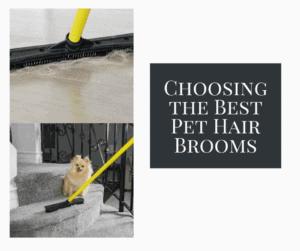 Choosing the Best Pet Hair Brooms