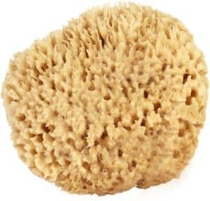 Sea Wool Sponge (Large)
