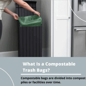 What Is a Compostable Trash Bags_