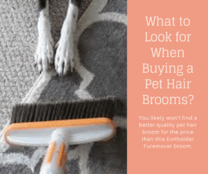 What to Look for When Buying a Pet Hair Brooms_