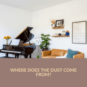 Where Does the Dust Come From_