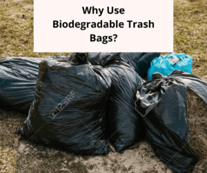 Why Use Biodegradable Trash Bags_